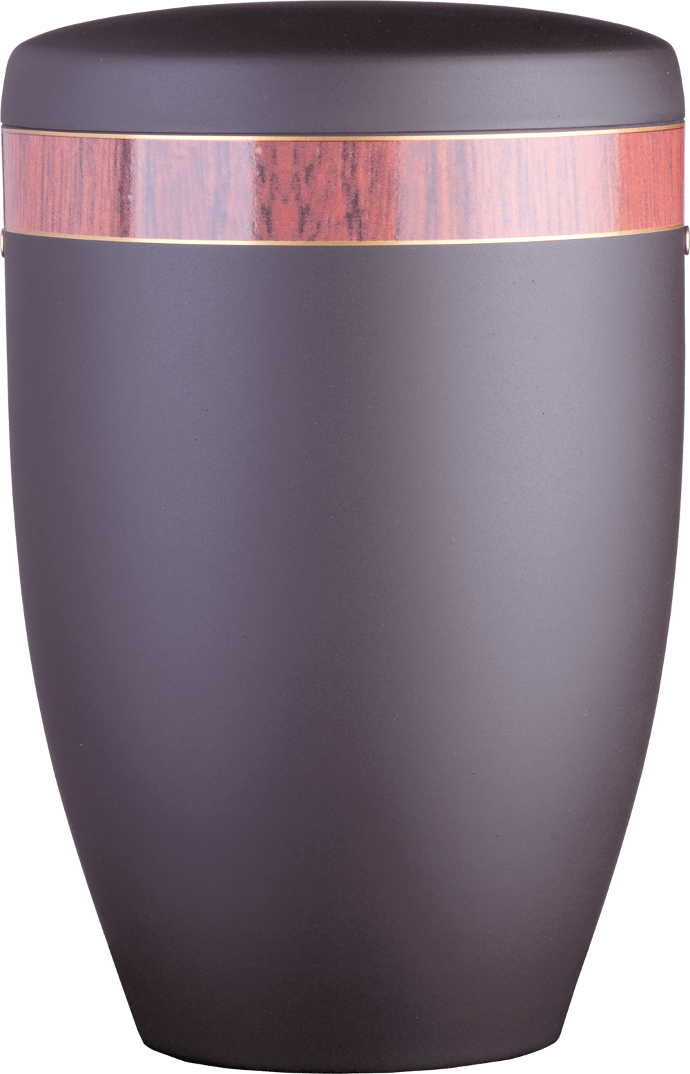 6294 Schwarz | Holzdekorband